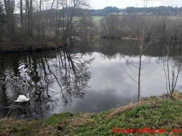 Rybníky s pozemky, obec Běšiny